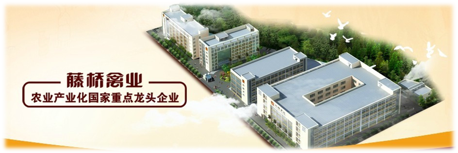 Tengqiao Poultry Industry( China)